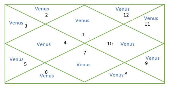 Venus in all houses in Vedic astrology